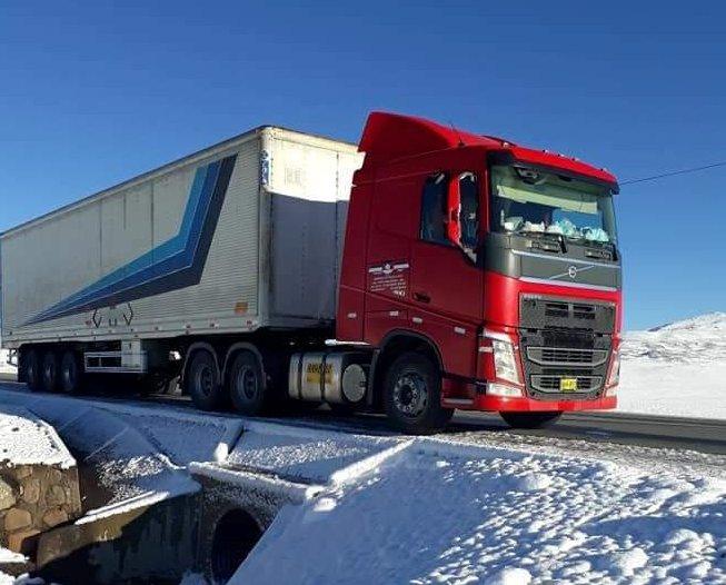 Modernos camiones Volvo en Ruta